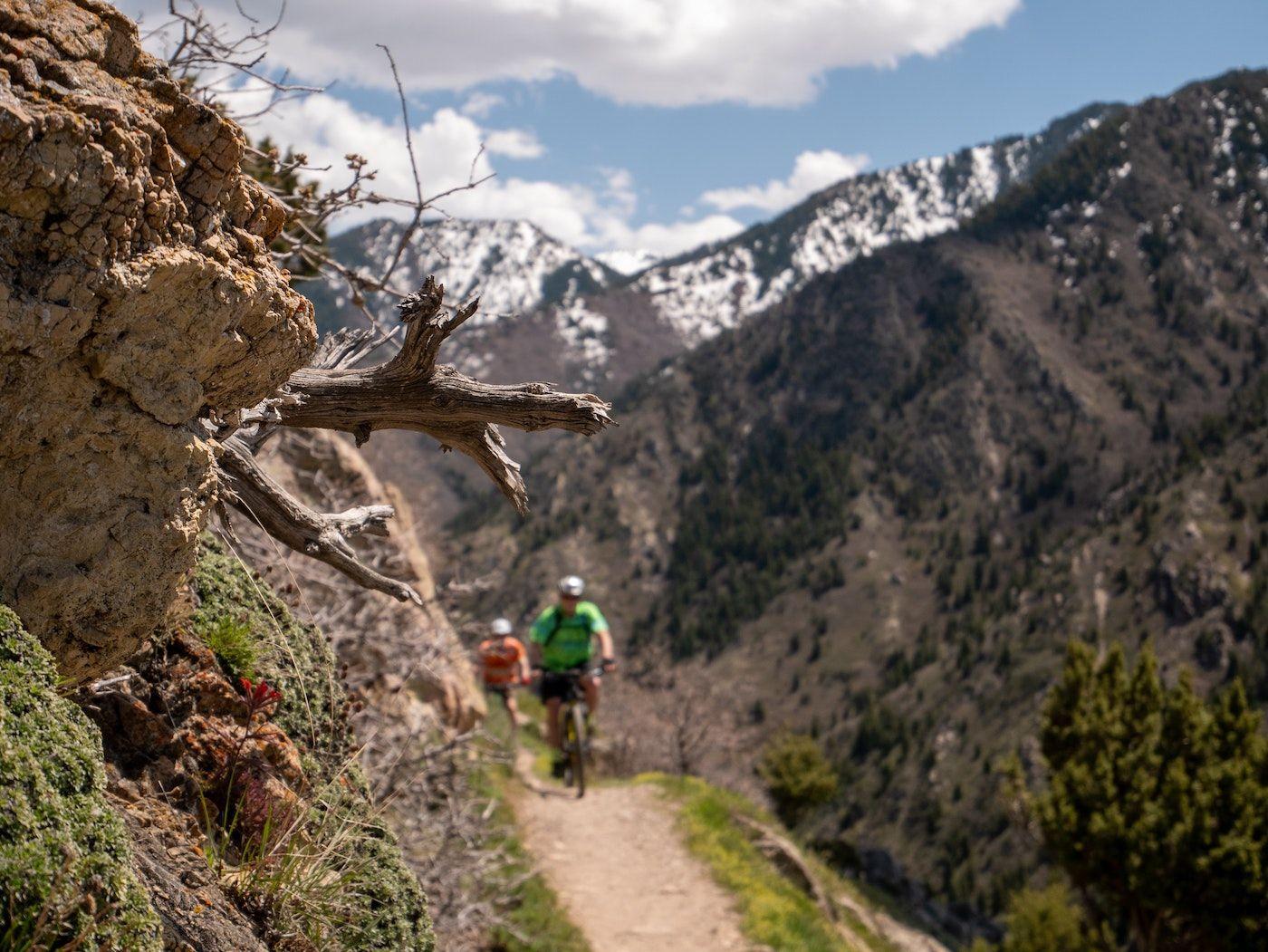 biking on trail between mountains_best corporate retreat destinations_flok