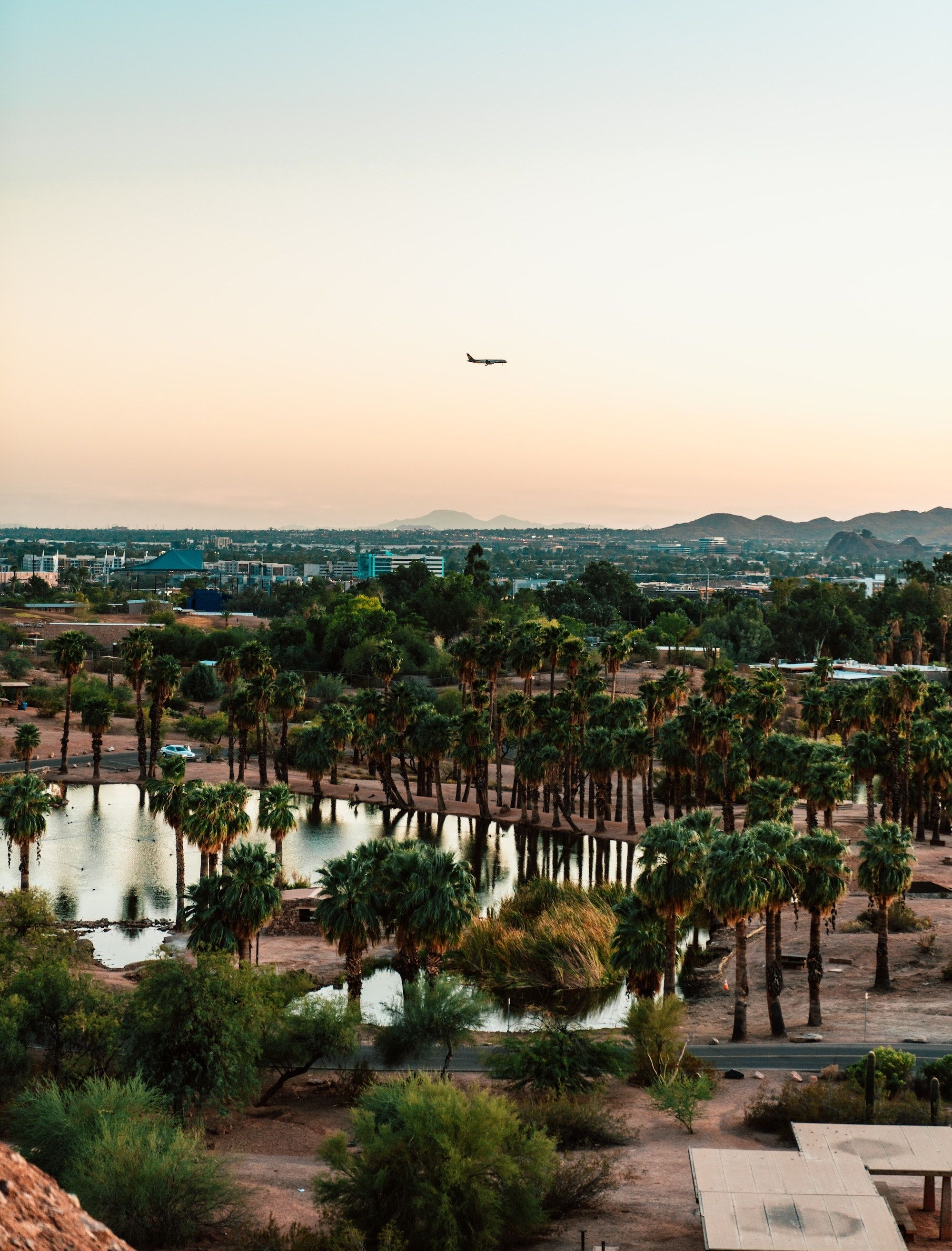 plane flying over palm trees and small body of water_best corporate retreat destinations_flok